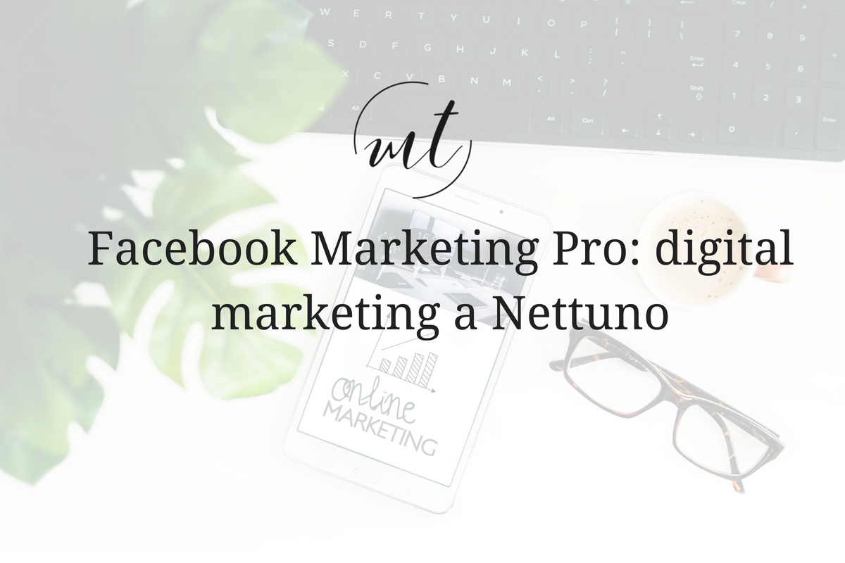 Facebook Marketing Pro: digital marketing a Nettuno
