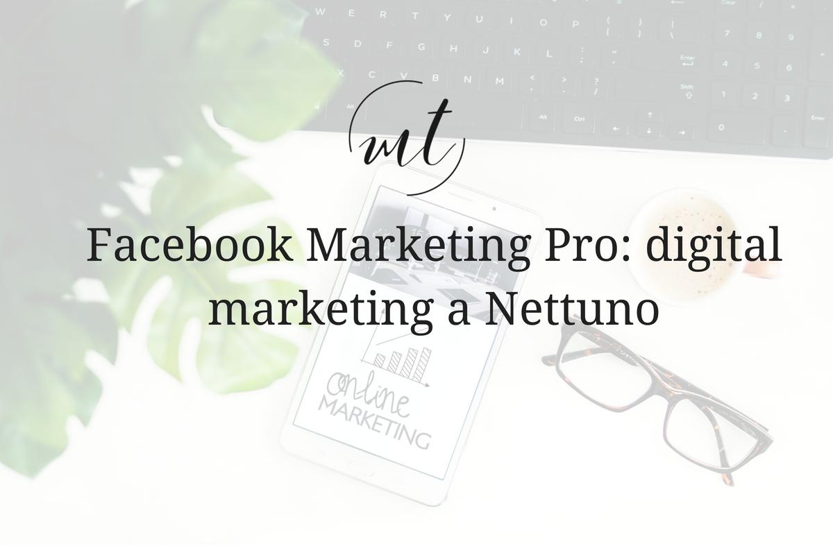 Facebook Marketing Pro: digital marketing a Nettuno